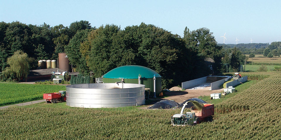 biogas plant and maize field