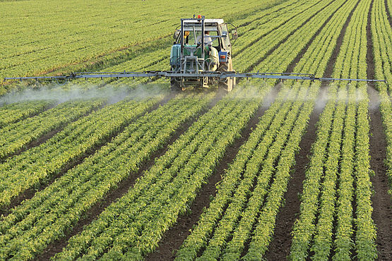 Pesticide analysis in food