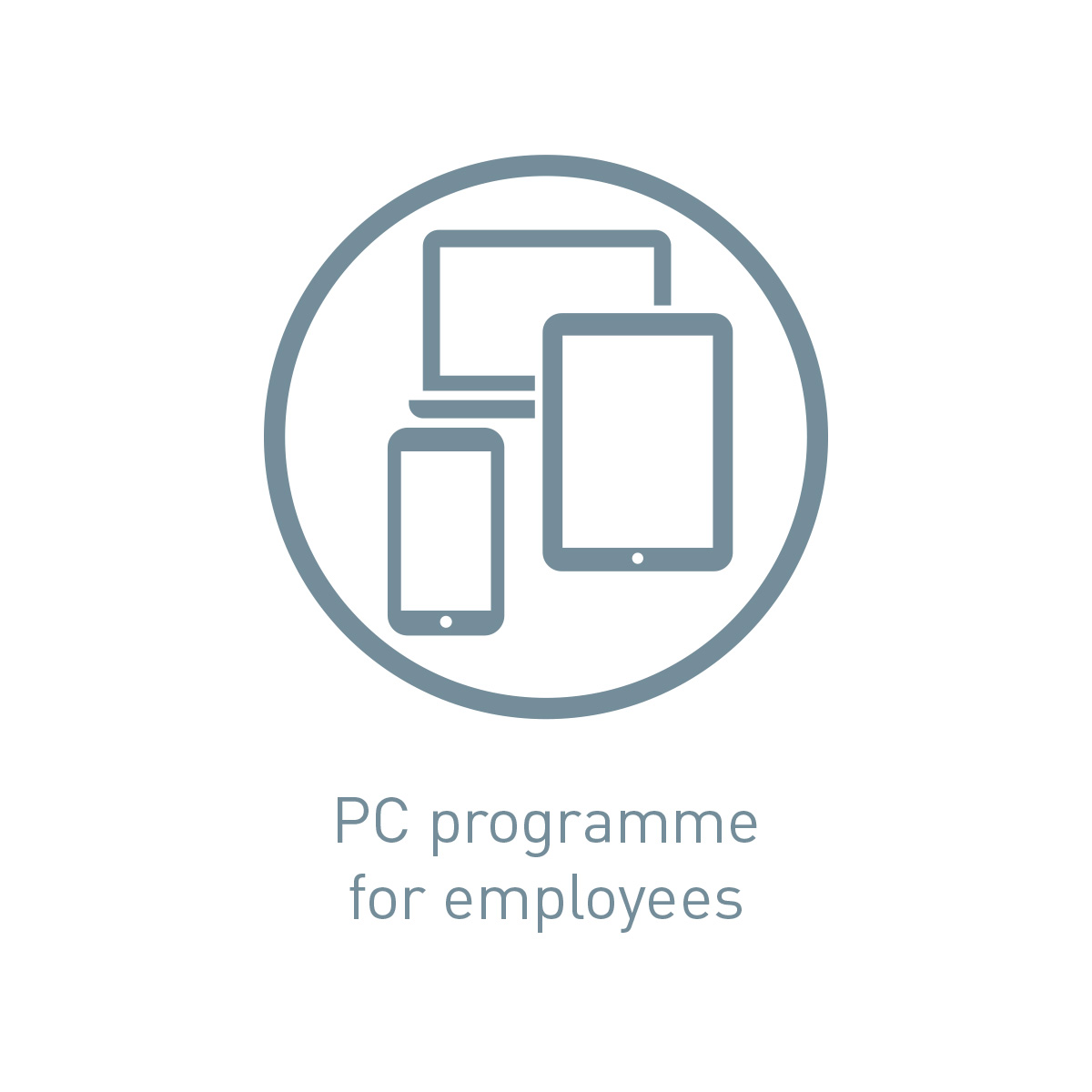 Icon PC programme for employees