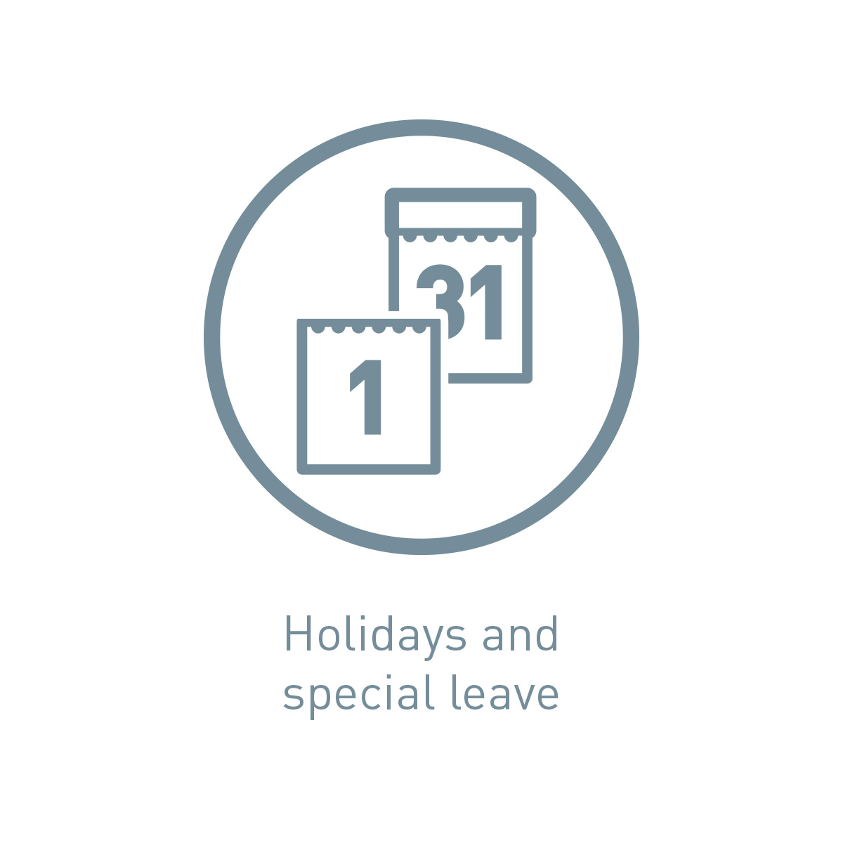 Icon holidays and special leave